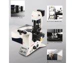 德國徠卡 共聚焦顯微鏡 TCS SP8 共聚焦顯微鏡(激光掃描)