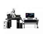 德國徠卡 共聚焦顯微鏡 TCS SP8 DIVE