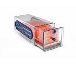 全新蜂巢CO2培養箱