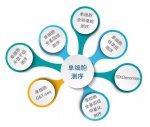 單細胞測序服務SMCXFW