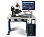 DUET-3全自動高通量掃描系統