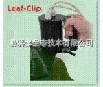 FL3500/LC 雙調制葉片葉綠素熒光動態測量系統