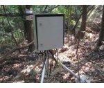 植物莖流葉溫監測系統