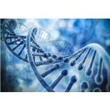 """单细胞测序技术""""遍地开花"""",精准医疗""""如虎添翼""""!"""