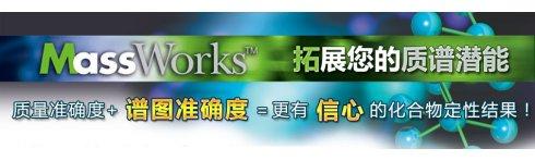专题 MassWorks技术专题