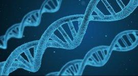 20190826 生物成像检测技术及应用