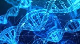 50周年 | SciTalk質譜創新云講堂(1):表觀基因組學中堿基修飾物CEMS分析方法研究