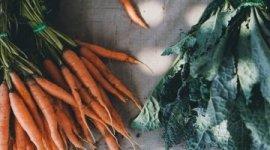 20200408 食品與農產品中重金屬及有害元素檢測技術