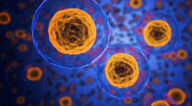 顶级期刊中的定量蛋白质组学进展—TMT标记的技术进展和临床应用